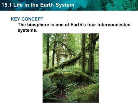 15.1 Life in the Earth System KEY CONCEPT The biosphere is one of Earth's four interconnected systems.