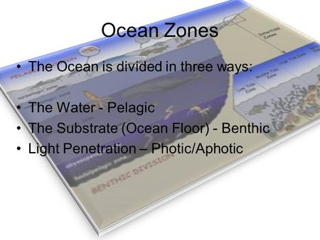 Ocean Zones The Ocean is divided in three ways: The Water - Pelagic The Substrate (Ocean Floor) - Benthic Light Penetration – Photic/Aphotic.