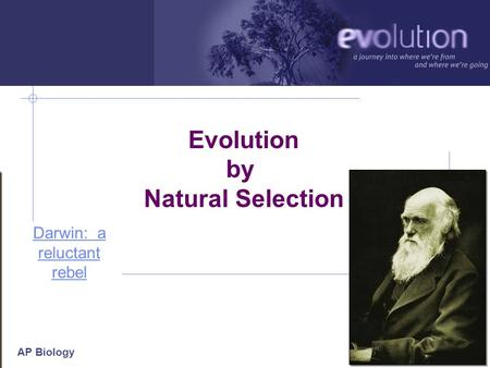 AP Biology 2006-2007 Evolution by Natural Selection Darwin: a reluctant rebel.
