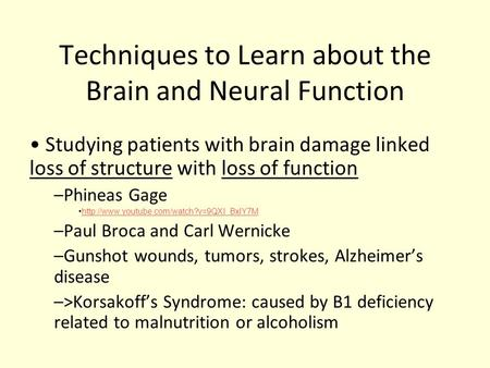 Techniques to Learn about the Brain and Neural Function Studying patients with brain damage linked loss of structure with loss of function –Phineas Gage.