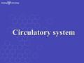 Circulatory system. General outline Blood vascular system (cardiovascular system)Blood vascular system (cardiovascular system) Lymphatic vascular systemLymphatic.