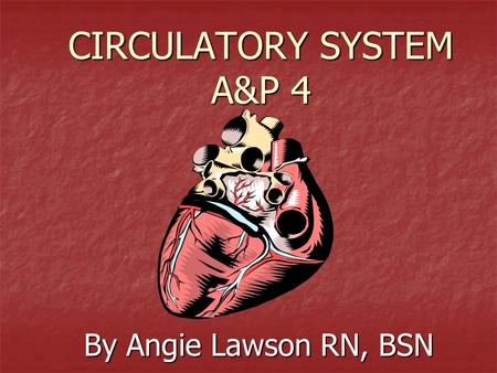 CIRCULATORY SYSTEM A&P 4 By Angie Lawson RN, BSN.