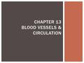 CHAPTER 13 BLOOD VESSELS & CIRCULATION.  Three layers  Tunica Interna: innermost layer  Tunica Media: smooth muscle  Tunica Externa: connective tissue;