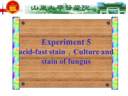 Experiment 5 acid-fast stain , Culture and stain of fungus.