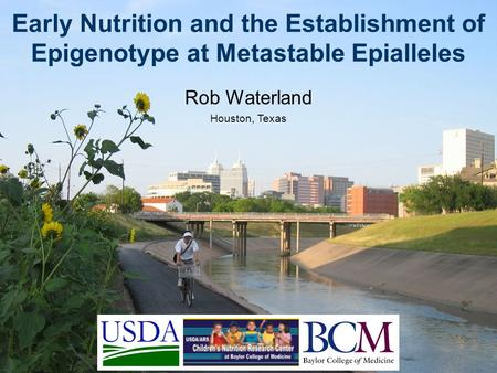 Early Nutrition and the Establishment of Epigenotype at Metastable Epialleles Rob Waterland Houston, Texas.