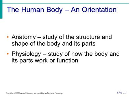 The Human Body – An Orientation Slide 1.1 Copyright © 2003 Pearson Education, Inc. publishing as Benjamin Cummings Anatomy – study of the structure and.