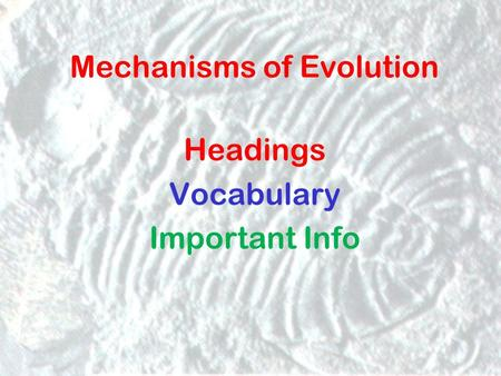 Mechanisms of Evolution Headings Vocabulary Important Info.