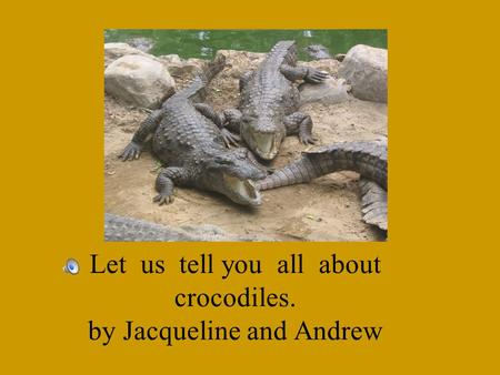 Let us tell you all about crocodiles. by Jacqueline and Andrew.