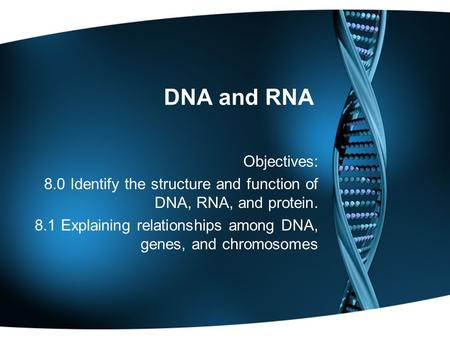 DNA and RNA Objectives: 8.0 Identify the structure and function of DNA, RNA, and protein. 8.1 Explaining relationships among DNA, genes, and chromosomes.