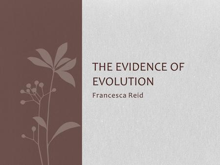 Francesca Reid THE EVIDENCE OF EVOLUTION. Palaeontology Palaeontology is the study of fossils that remain from a once- living organism. Fossils are made.
