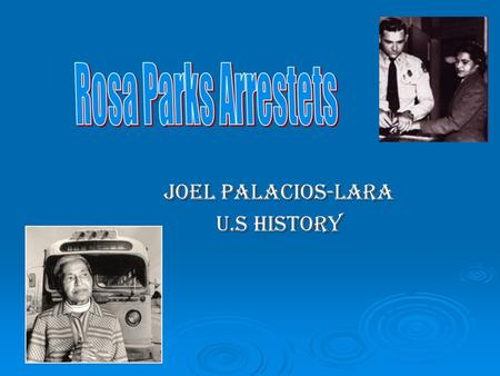 Joel Palacios-Lara U.S history. The Cause On the 1st of December 1955, Mrs. Rosa Parks, an African-American seamstress, was arrested in Montgomery, Alabama.