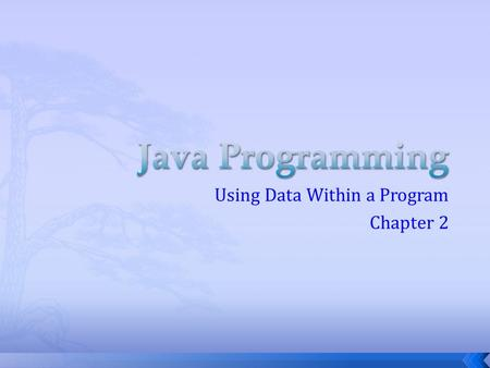 Using Data Within a Program Chapter 2.  Classes  Methods  Statements  Modifiers  Identifiers.