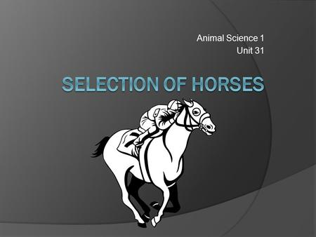 Animal Science 1 Unit 31. Terms  Foal: a young horse of either sex up to one year of age  Filly: a female less than 3 years of age Thoroughbreds, fillies.