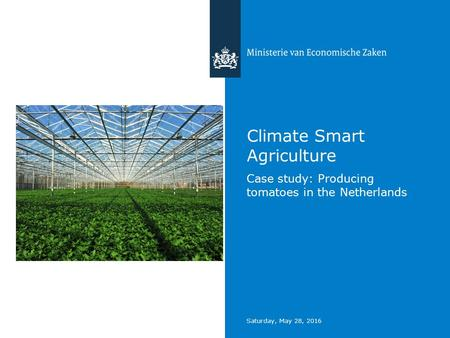 Saturday, May 28, 2016 Climate Smart Agriculture Case study: Producing tomatoes in the Netherlands.