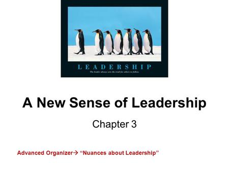"A New Sense of Leadership Chapter 3 Advanced Organizer  ""Nuances about Leadership"""