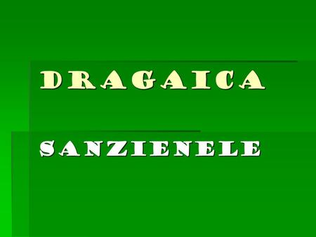 DRAGAICA SANZIENELE.  Holiday Dragaica or Sanzienele is an old Romanian holiday,celebrations are held on June 24, St. John the Baptist's birthday. Is.