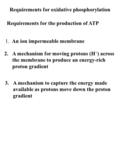Requirements for oxidative phosphorylation 1. An ion impermeable membrane 2.A mechanism for moving protons (H + ) across the membrane to produce an energy-rich.
