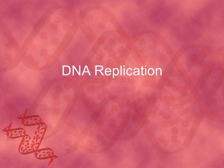 DNA Replication. When does DNA replication happen during the cell cycle? The S phase In order to go through cell division we must have two copies of DNA.
