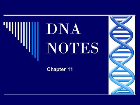 DNA NOTES Chapter 11. What does DNA stand for? __________________________ DNA is made up of single units (building blocks) called ______________.