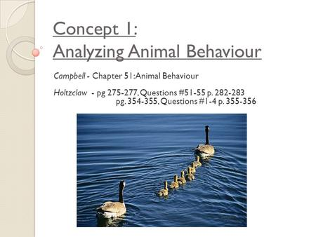 Concept 1: Analyzing Animal Behaviour Campbell - Chapter 51: Animal Behaviour Holtzclaw - pg 275-277, Questions #51-55 p. 282-283 pg. 354-355, Questions.
