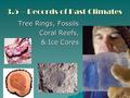 3.5 – Records of Past Climates Tree Rings, Fossils Coral Reefs, & Ice Cores.