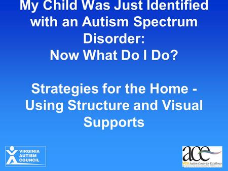 My Child Was Just Identified with an Autism Spectrum Disorder: Now What Do I Do? Strategies for the Home - Using Structure and Visual Supports.