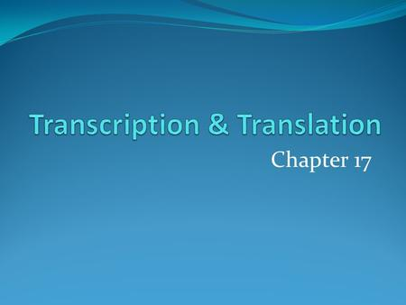 Chapter 17. The Central Dogma Transcription & Translation Three main steps for each: Initiation Elongation Termination.
