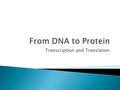 Transcription and Translation.  Genes: are segments of DNA that code for proteins  Most nucleotide base sequences in DNA don't code for anything  ATGCGAATCGTAGCATACGATGCATGCACGTG.