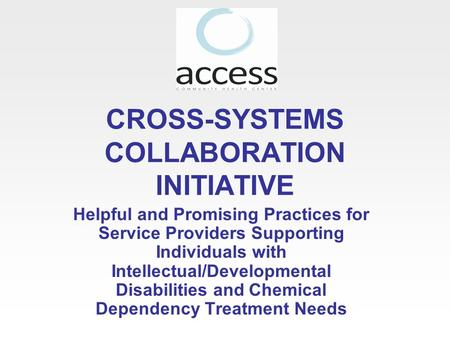 CROSS-SYSTEMS COLLABORATION INITIATIVE Helpful and Promising Practices for Service Providers Supporting Individuals with Intellectual/Developmental Disabilities.