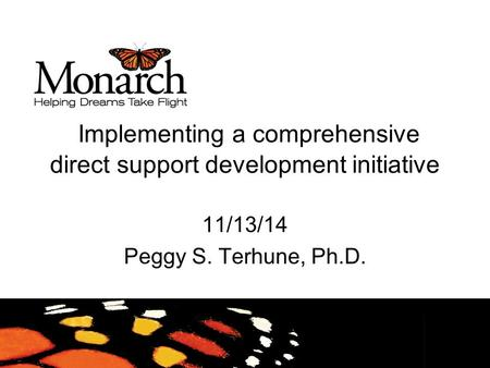 Implementing a comprehensive direct support development initiative 11/13/14 Peggy S. Terhune, Ph.D.