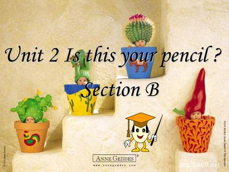 Unit 2 Is this your pencil ? Section B Revision: What's this in English? a p ______________ a p__ an e _______ a r____ a p ______ a pencil case.