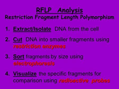 RFLP Analysis Restriction Fragment Length Polymorphism 1.Extract/Isolate DNA from the cell restriction enzymes 2.Cut DNA into smaller fragments using restriction.