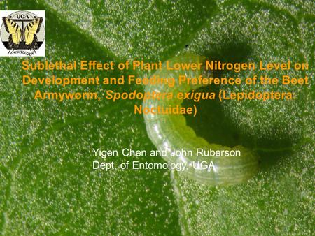 Sublethal Effect of Plant Lower Nitrogen Level on Development and Feeding Preference of the Beet Armyworm, Spodoptera exigua (Lepidoptera: Noctuidae) Yigen.