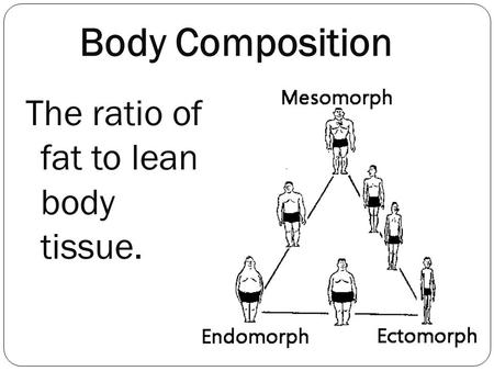 The ratio of fat to lean body tissue. Body Composition.