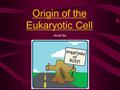 Origin of the Eukaryotic Cell Accel Bio From where, the first cell? The scene: early earth, 3 billion years ago. Intense lightning, volcanic activity,