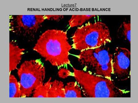 Lecture7 RENAL HANDLING OF ACID-BASE BALANCE. Acid-Base Background Information Traditionally Confusing SEVEN GENERAL GUIDLINES One ► One ►Balance principle.