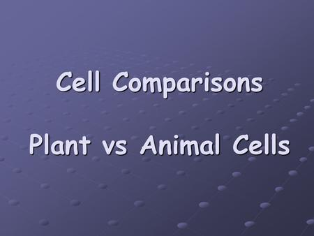 Cell Comparisons Plant vs Animal Cells. Prokaryotic Cells Bacteria and Archaebacteria ONLY NO Nucleus! DNA is free floating NO organelles! All chemical.