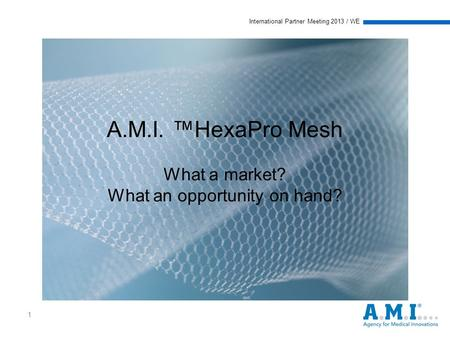 International Partner Meeting 2013 / WE 1 A.M.I. ™HexaPro Mesh What a market? What an opportunity on hand?