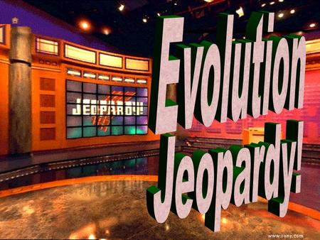 The theory of evolution 100 200 100 200 300 400 500 300 400 500 100 200 300 400 500 100 200 300 400 500 100 200 300 400 500 Darwin's Six Points TermsEvidence.