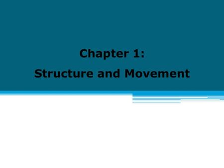 Chapter 1: Structure and Movement. 1.1 The Skeletal System I.Living Bones A. Functions of Your Skeletal System 1. Skeletal system: all the bones of your.