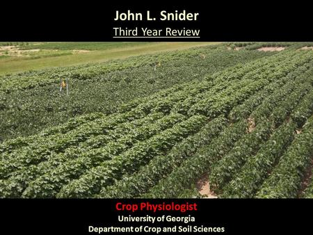John L. Snider Third Year Review Crop Physiologist University of Georgia Department of Crop and Soil Sciences.