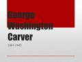 George Washington Carver 1861-1943. George Washington Carver was born into slavery in 1861.