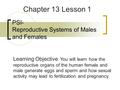 PSI- Reproductive Systems of Males and Females Chapter 13 Lesson 1 Learning Objective : You will learn how the reproductive organs of the human female.