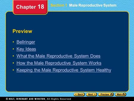 Preview Bellringer Key Ideas What the Male Reproductive System Does How the Male Reproductive System Works Keeping the Male Reproductive System Healthy.