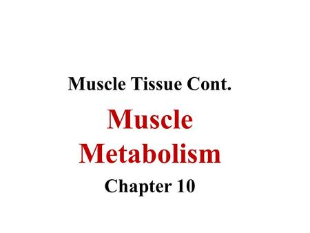 Muscle Tissue Cont. Muscle Metabolism Chapter 10.