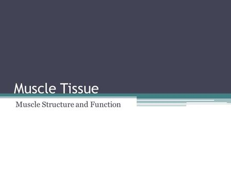 Muscle Tissue Muscle Structure and Function. Types of Muscle Tissue Skeletal Muscle Tissue – moves the body by pulling on bones of the skeleton ▫Allows.