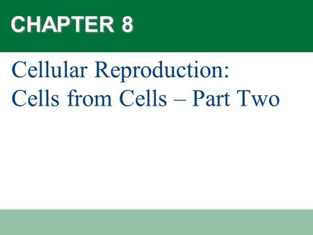 CHAPTER 8 Cellular Reproduction: Cells from Cells – Part Two.