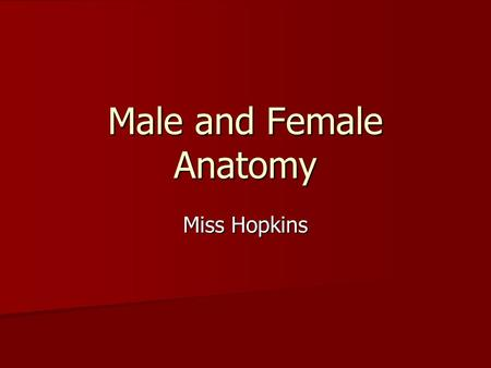 Male and Female Anatomy Miss Hopkins. Activity/Labeling Worksheets The first person in each column will write a word they know related to MALE or FEMALE.