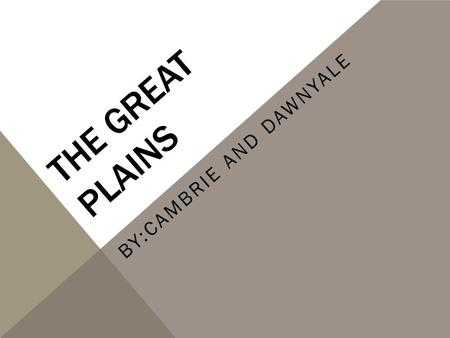 THE GREAT PLAINS BY:CAMBRIE AND DAWNYALE. TRIBE NAMES Sioux Blackfoot Cheyenne Crow Kiowa Comanche.