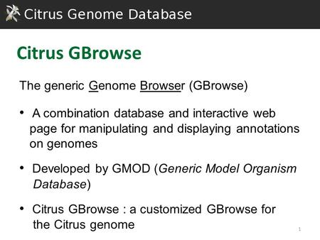The generic Genome Browser (GBrowse) A combination database and interactive web page for manipulating and displaying annotations on genomes Developed by.